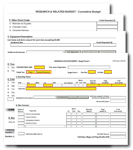 R r budget form for Budget autoconstruction