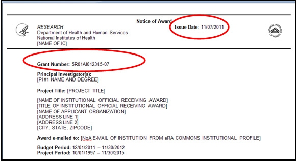 "Example 1:  Award with ""initial Issue Date""—no reference to ""REVISED"" is shown as part of the Grant Number Field"
