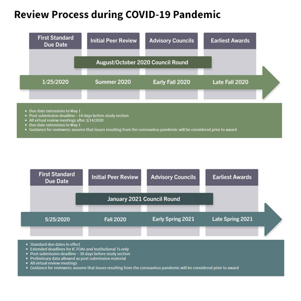 Review Process during COVID-19 Pandemic graphic thumbnail linking to the process page