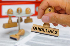 Guidelines, Critique Templates & Review Criteria