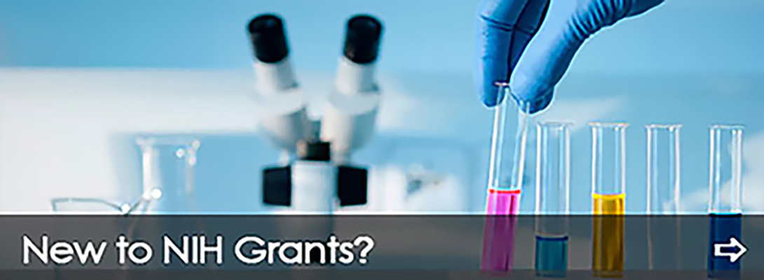 New to grants?